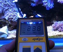 PAR Meter; Aquarium