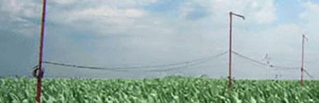 Crop Water Stress Index