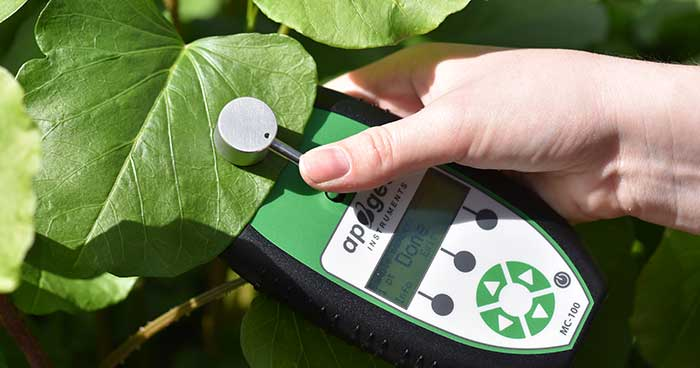 Applications and Uses of Chlorophyll Content Meters