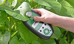 Chlorophyll meter measures chlorophyll concentration in absolute units