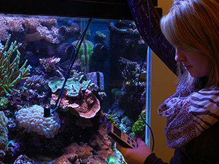Waterproof Par Meter / Quantum Sensor for measuring PAR in coral aquariums